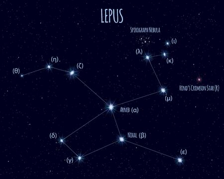 Lepus (The Hare) constellation, vector illustration