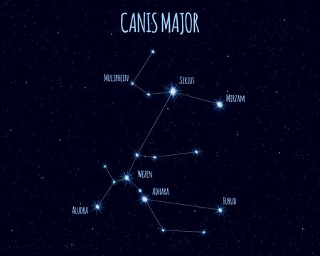Canis Major (The Great Dog) constellation, vector illustration