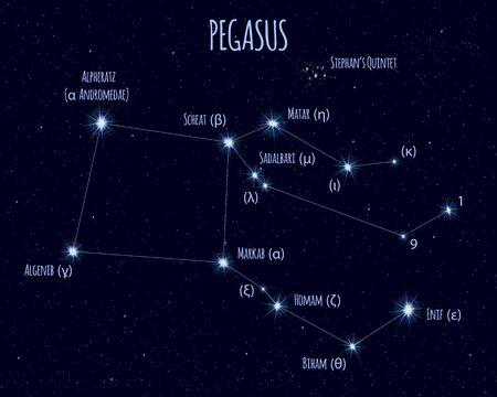 Pegasus constellation, vector illustration