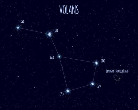 Volans (The Flying Fish) constellation, vector illustration