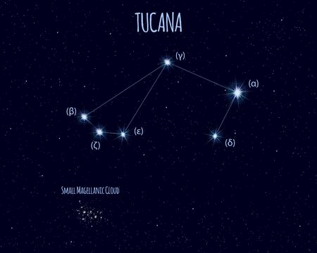 Tucana (The Toucan) constellation, vector illustration