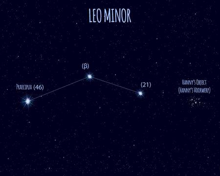 Leo Minor (The Lesser Lion) constellation, vector illustration