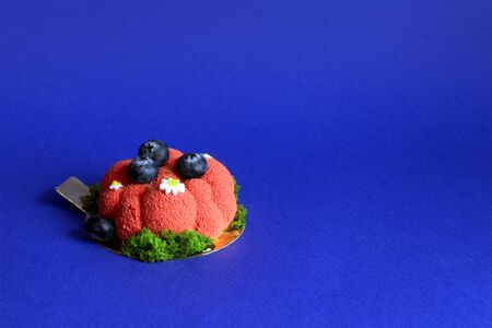 Delicious red cake with decoration of blueberries isolated on violet background Фото со стока