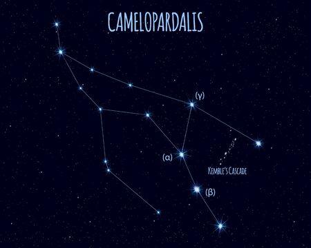 Camelopardalis (The Giraffe) constellation, vector illustration Иллюстрация