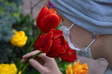 Woman in medical face mask dressed in gray smelling bright tulips growing on a flowerbed Фото со стока