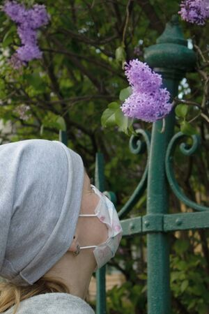 Woman in medical face mask smelling young violet lilac bunch growing behind green iron fence Фото со стока