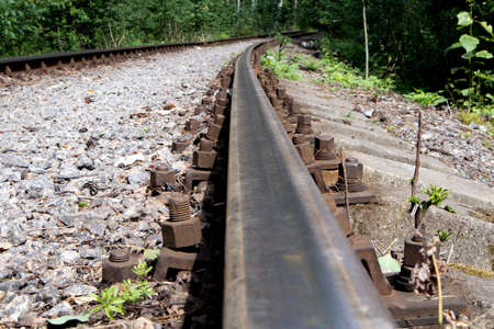 Old forest railway track with rusty rails going into the distance