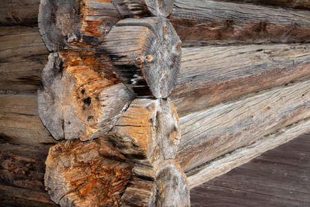 Corner connection of logs in traditional russian architecture of country houses Фото со стока