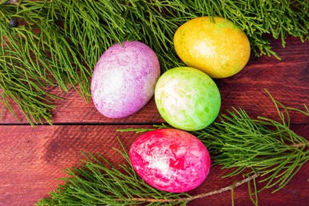 Four multicolored bright easter eggs and thuja branch lying on red wood deck Фото со стока