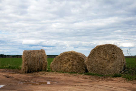 Three straw bales lying close to the sandy road against cloudy sky Фото со стока