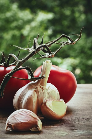 bulb and stem vegetables: Vertical photo of red fresh tomatoes on the green stem garlic bulb and cloves on the blured background