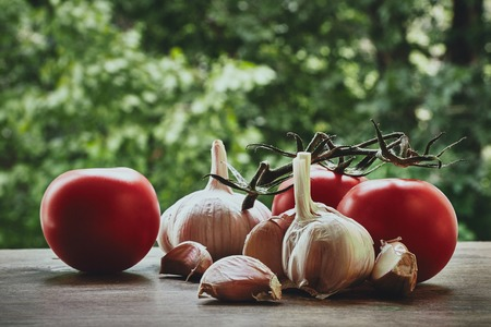 bulb and stem vegetables: Composition of red fresh tomatoes on the green stem garlic bulb and cloves on the blured background Stock Photo