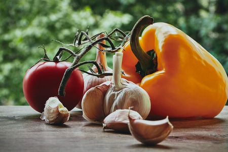 bulb and stem vegetables: Composition with orange pepper, red fresh tomatoe on the green stem, garlic bulb and cloves on the blured background