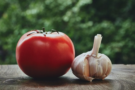 bulb and stem vegetables: Photo of red tomato on the green stem and garlic head on the blured background