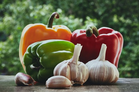 bulb and stem vegetables: Horizontal photo of red, orange and green peppers, garlic bulb and cloves on the green blured background