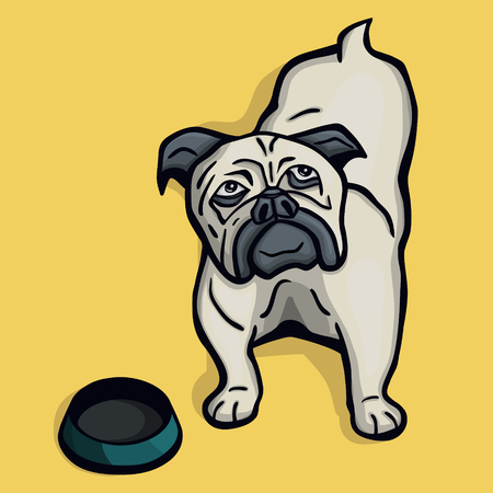 empty bowl: Young funny little hungry pug dog next to the empty bowl on yellow background Illustration