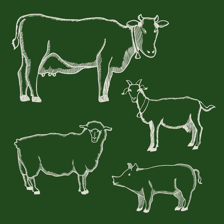 cow bells: Hand drawn illustration of cow, pig, goat and sheep