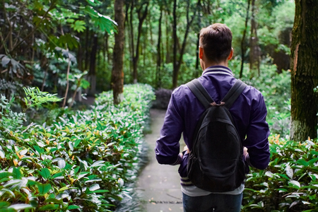 Young man wearing the purple blazer is walking in the forest with gray backpack Stock Photo