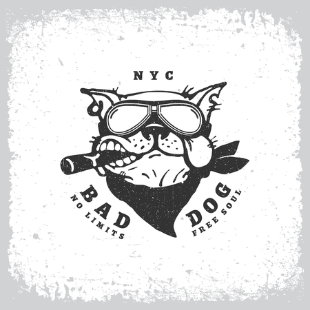 Vintage label with bulldog in goggles on grunge background for t-shirt print, poster, emblem. Vector illustration.