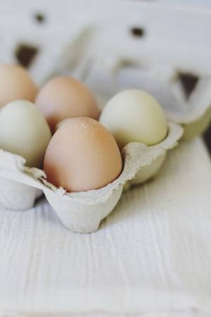 homegrown: Organic, home-grown chicken eggs in a carton