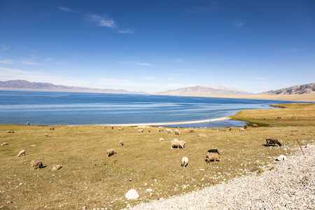 xinjiang: Landscape scenery view of Sayram Lake in Xinjiang, China Banque d'images