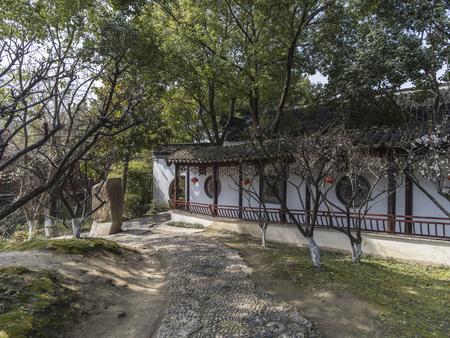 Suzhou garden