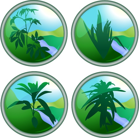 Green plant buttons Vector