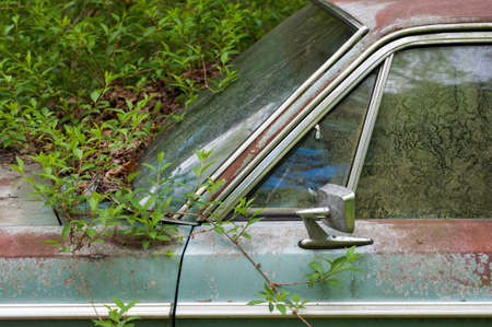 Detail of a rusty green car abandoned by the side of the road