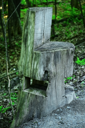 trone: Trunk wood chair in the forest