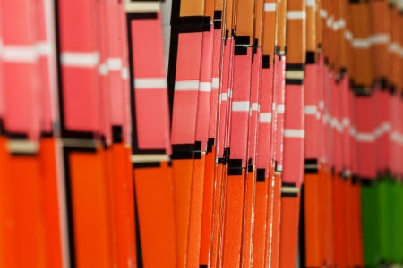 Document paper folders in red pink brown colors macro