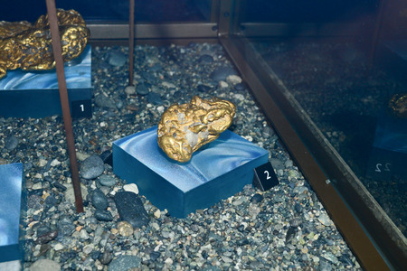 molted: Hull, Canada - May 21, 2016: Gold nugget  at Canadian museum of history exposition molted with quartz under heavy glass guard .