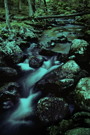 Water stream in wooded area of Devil