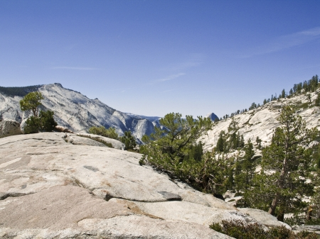Backcountry during the summer time in Yosemite