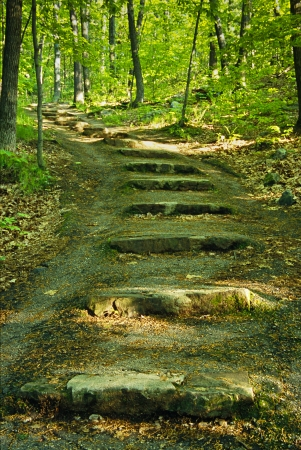 A path with stairs in the woods at Devil Stock fotó