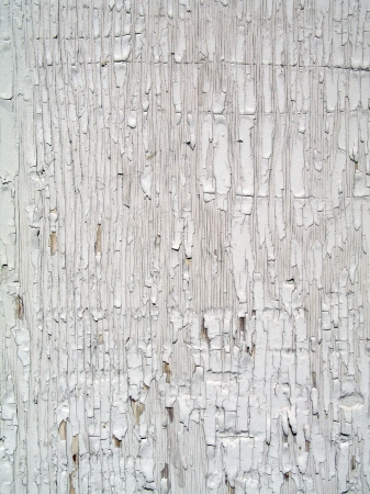 Rough textured old wooden wall with peeling paint