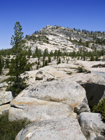 Backcountry during the summer time in Yosemite Stock fotó - 24759008