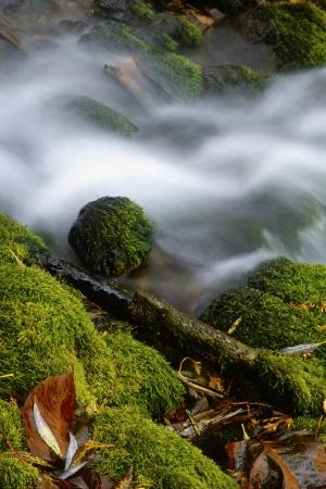 Water flowing over rocks in long exposure