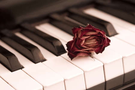 heartache: Rose and piano