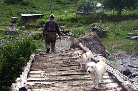 backwoods: Dogs and a man walking over a wooden bridge in Georgia Stock Photo