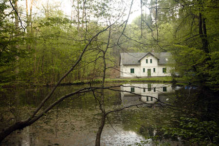 lake house: Lake house in Czech republic forest