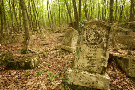 Jewish cemetary in Crimea, Ukraine  Editorial