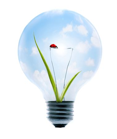 clean energy: Clean energy, a light bulb with a bright sky, grass, and lady-bug.
