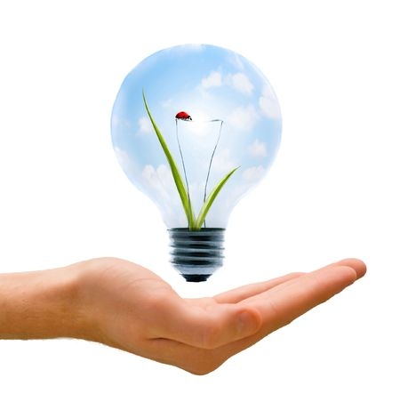 Clean energy, a light bulb with a bright sky and ladybug held up by a hand. Stock Photo - 5423252