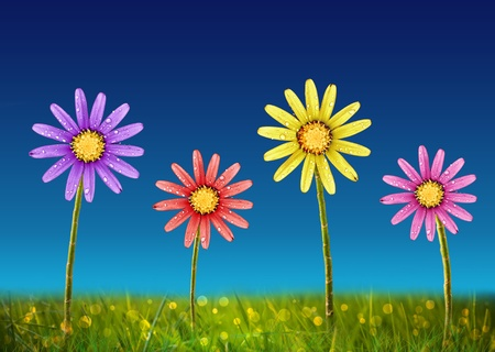Colorful Spring Flowers with rain drops Stock Photo