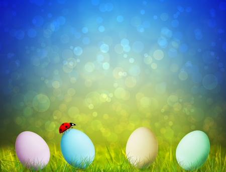 Colorful Easter Eggs on green grass  with  a ladybug