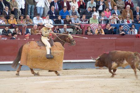 hemingway: Bullfighting