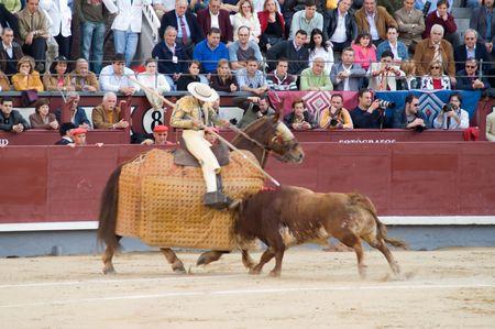 Bullfighting photo