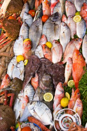 marocco: Fish on sale in market Essaouira, Morocco
