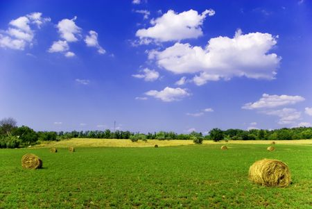 Agricultural landscape of hay bales in a field Stock Photo - 1343200