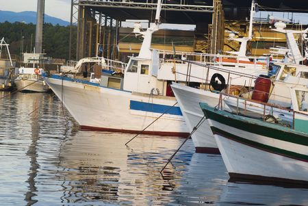 Fishing boats are at rest in an italian port photo